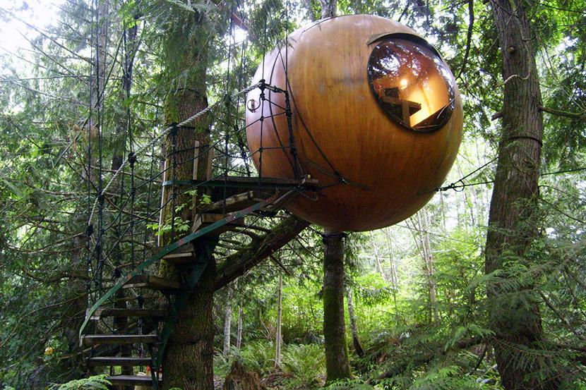 Дом на дереве для взрослых,